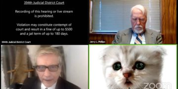 "Lawyer Tells Judge ""I am not a cat"" in a Virtual Court Hearing 